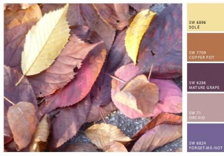 Edith - Herbstbilder Blätter 1tmpSnapShot