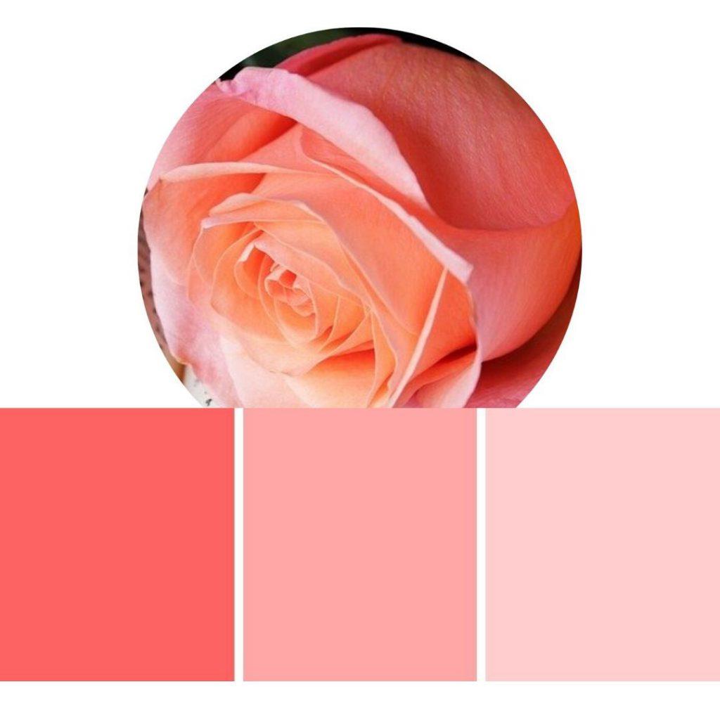 Joyvita Röcke in Pink