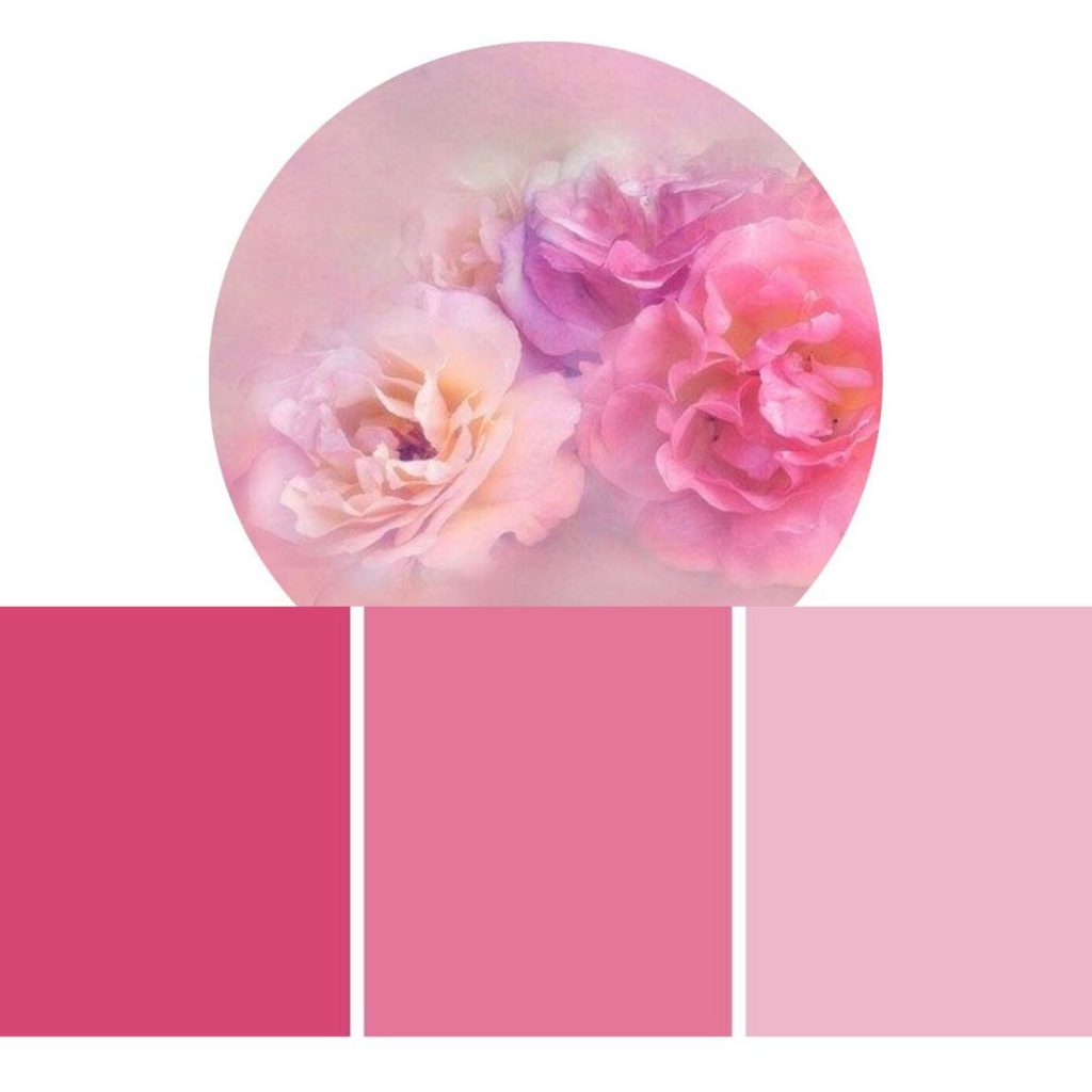 Joyvita in pink